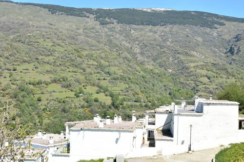 Pueblo Hotel En Capileira