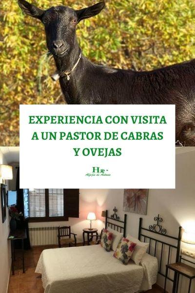 EXPERIENCIA CON VISITA A SECADERO DE JAMONES EN TREVELEZ (1)