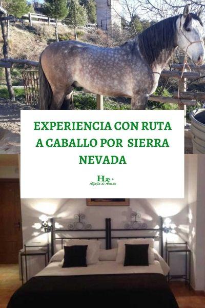 Experiencia Con Ruta A Caballo Por Sierra Nevada